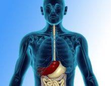 флебэктазия пищевода