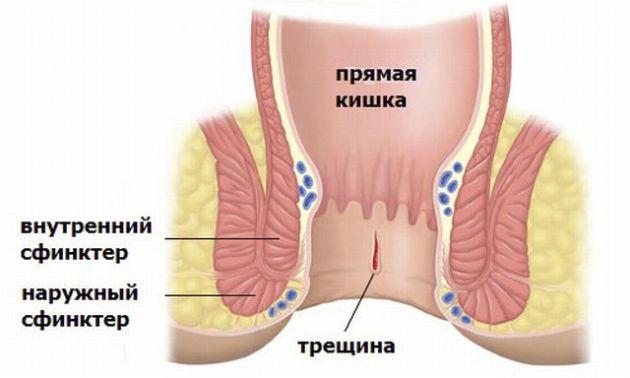 luchshie-porno-sayt-dlya-telefonov