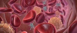 тромбы в крови