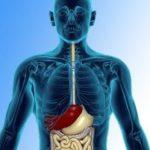 варикоз пищевода