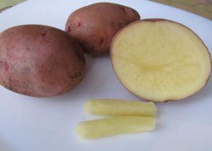 свечи из картофеля от геморроя