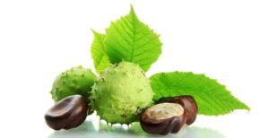 вытяжка из плодов конского каштана