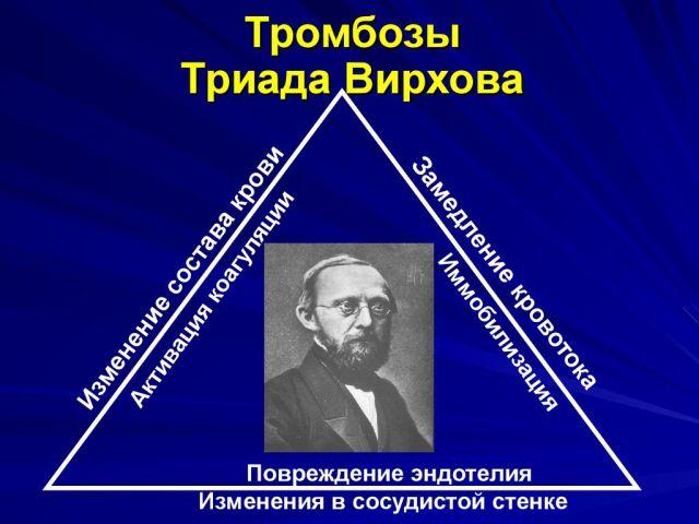 триада Вирохова